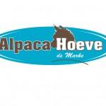 Alpaca-Hoeve-de-Marke