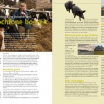 Boeskool2013_p18-19_web
